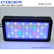 full colour rif 3 watt zeeaquarium led-verlichting