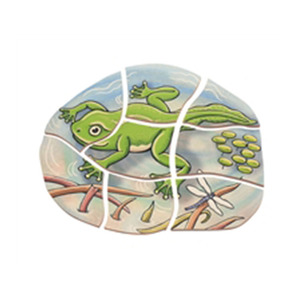 Funny Study Wooden Educational Puzzles Layer Puzzle - Frog Kids Stem Learning Toys