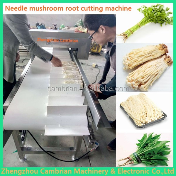 Flower planting base supermarket vegetable strapping machine