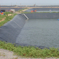 Large Plastic Fish Pond HDPE Geomembrane Liner