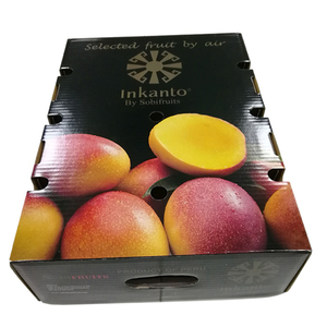 Fresh mango packing boxes for shipping