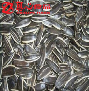 American Type Sunflower Seeds Size 24/64