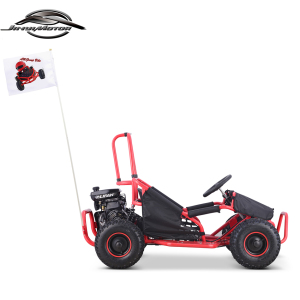 2018 Fashion EPA Racing Go Karts/Dune Buggy/ATV with CE