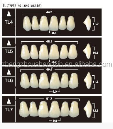 Yamahachi New Ace Teeth/ False Teeth