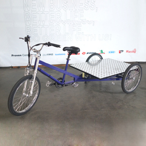 ESTER High Quality 3 Wheels Electric Cargo Flatbed Trike