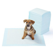 Disposable Pet training pads