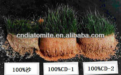 diatomite soil amendments for golf course management