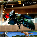 MY Dino-C024 Insect exhibition mechanical insect models