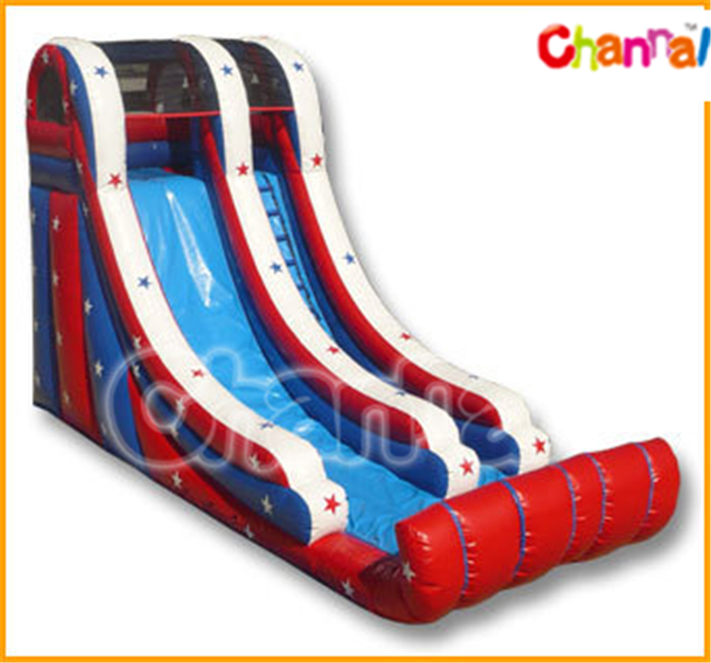 Giant Inflatable Double Wet/Dry Slide with Climbing for Kids