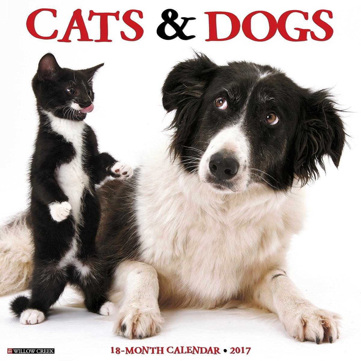 Cats & Dogs 2017 Wall Calendar