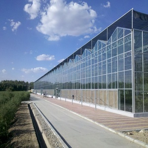 Booster Commercial Glass Greenhouse Used for Sale