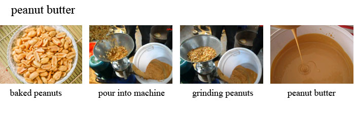 soy bean paste grinder shrimp sauce grinding machine