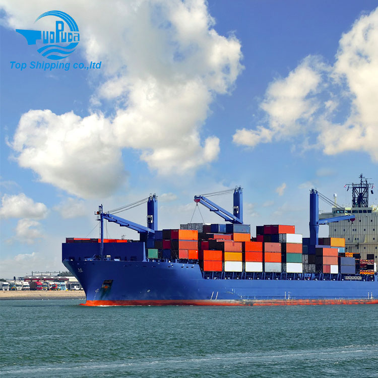 Top Shipping - FCL LCL Sea Freight DDU DDP Guangdong Shipping to USA