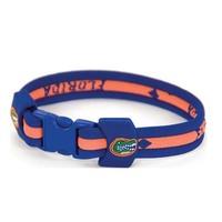 Florida Gators Titanium Bracelet