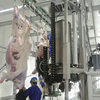 /product-detail/cattle-abattoir-slaughtering-equipment-60380287982.html