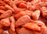 new product organic goji berries/ Lycium sinensis Mill/dry fruits in pakistan/Dried goli berry packed 500pcs/50g 4x 5kg