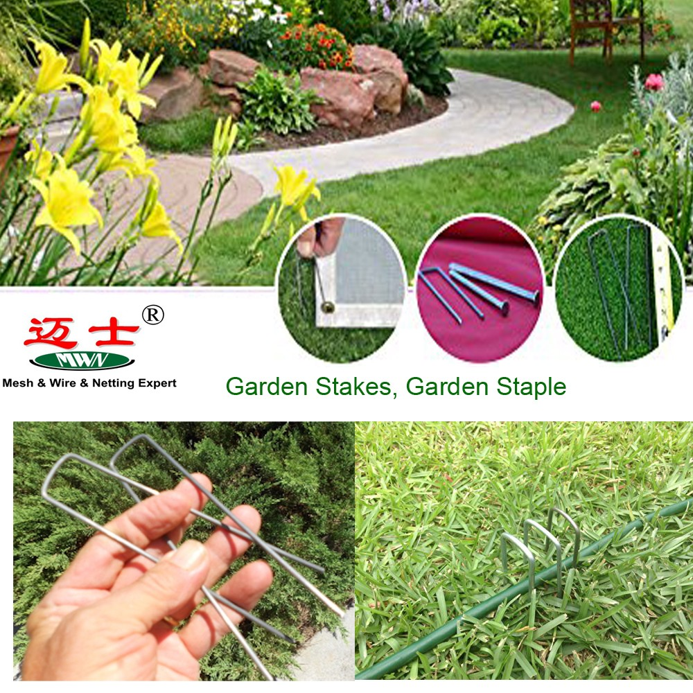 supply landscape staples / galvznized sod pins