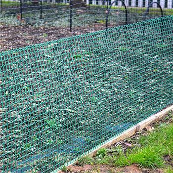 Rigid Green Plastic Garden Fencing Mesh