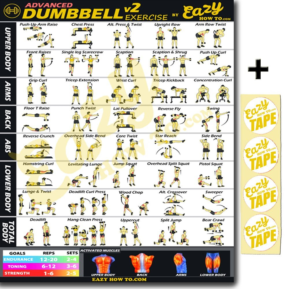 Build Strength /& Muscle Home Gym Chart Eazy How To Suspension Cables Exercise Workout Banner Poster BIG 28 X 20 Train Endurance Tone