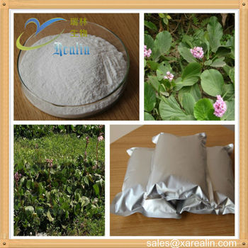 Natural Bergenin 98% Powder (Bergeninum) High Quality