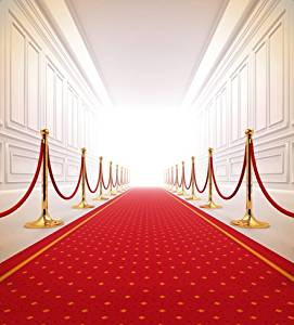 6.5 Ft*5 Ft(200cm*150cm) Luxury Indoor Palace Red Carpet Polyester Cotton Wedding Photo Background Customize Seamless Waterproof Printed Camera Photography Backdrop