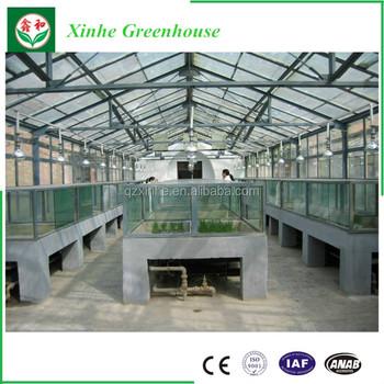 Polen Glasgrünhaus - Buy Glas Gewächshaus,Gewächshaus,Polen Glas  Gewächshaus Product on Alibaba.com
