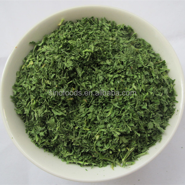 China Green leaf vegetables fresh Dehydrated Parsley