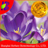 Manufacturer Supply Oil with saffron, top quality saffron oil