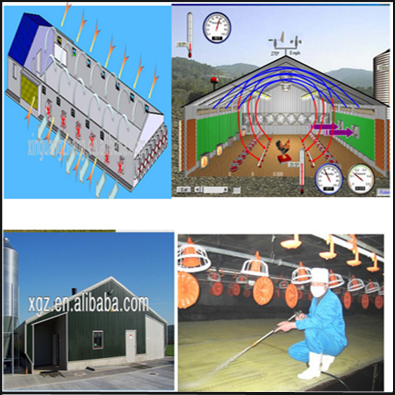 Automatic Control Equipment Building Steel Structure Poultry House