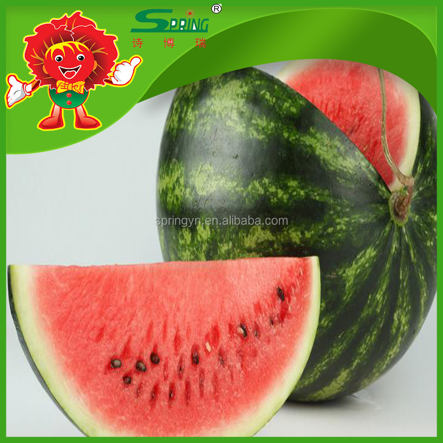 2016 new harvest red fresh watermelon cheap wholesale price in market
