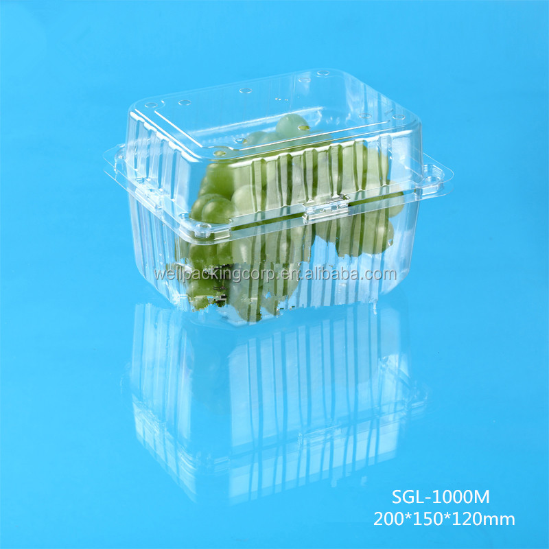 New Premium Disposable Plastic Fruit Packing Container with Clear Lid wholesale