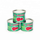 Fresh gino tomato paste for Africa with brix 28-30