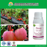 Organic insecticide / acaricide Placary for controlling red spiders and mites