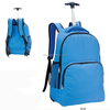 /product-detail/school-trolley-bag-kids-trolley-bag-for-primary-school-student-60287878422.html
