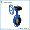 casting PN16 Handle Manual long type flange butterfly valve