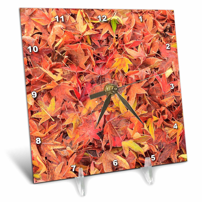 Danita Delimont - Autumn - Autumn color, maple leaves, Mill Creek, Washington State, USA - 6x6 Desk Clock (dc_231821_1)