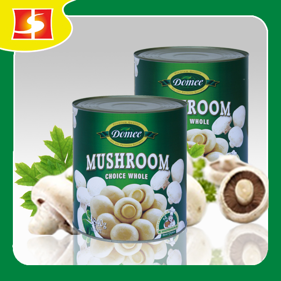 Wholesale fresh and delicious canned mushroom whole