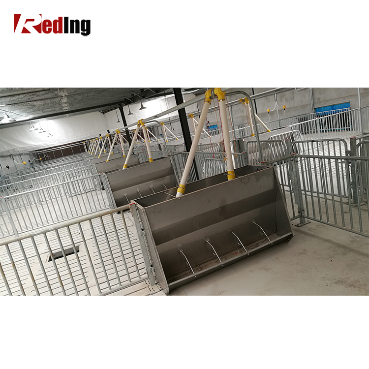 for feeders sale sided feeder shop hog double staco livestock equipment stainless nursery used
