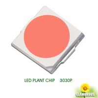 Low power plant light 3030 1W Flat Power LED Full spectrum