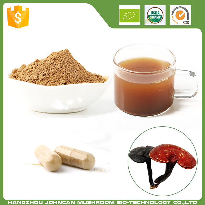 Chinese Herb Medicine 100% Natural Gmp Natural Ganoderma Lucidum Extract Supplier