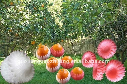 EPE Plastic Foam Fruit Tray For Apple