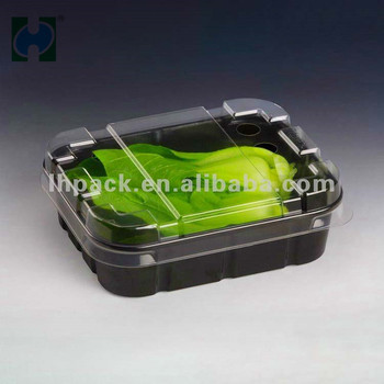 Gold supplier food grade plastic container disposable fruit takeaway packaging disposable plastic food container