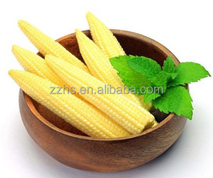 Baby Corn Processing Canned Young Corn Whole or Cut in Glass Jars DOMEE brand
