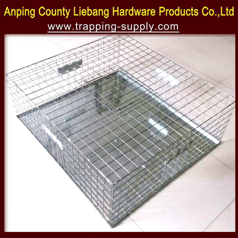 Bird Trap Hunting Wholesale, Hunting Suppliers - Alibaba