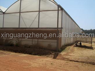 steel structural used greenhouse frames for sale