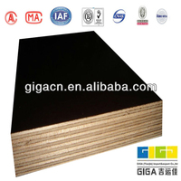 waterproof poplar 4ft 8ft construction formwork materials