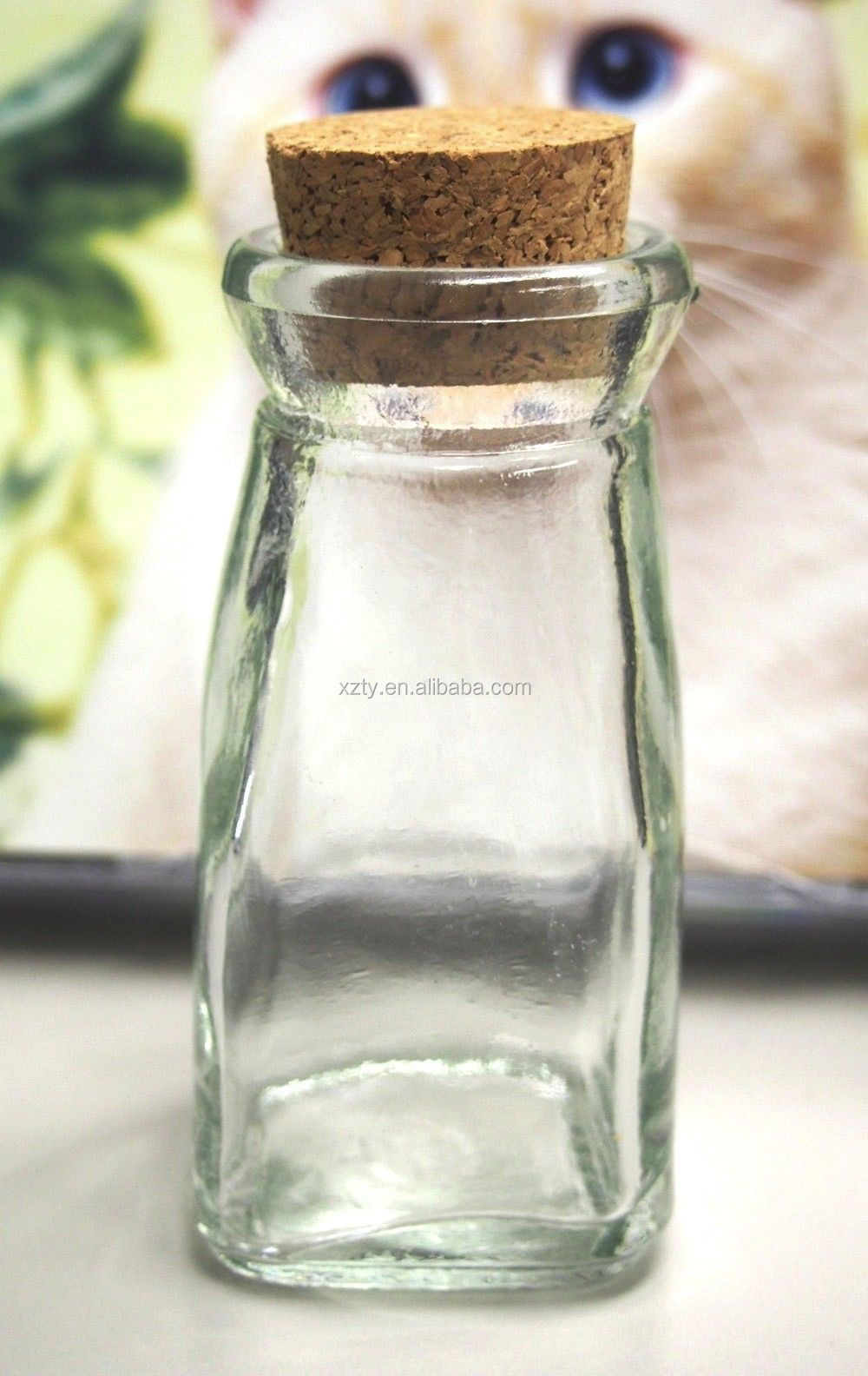 Mini Glass Favor Jars Bottle With Cork Keepsake Souvenir