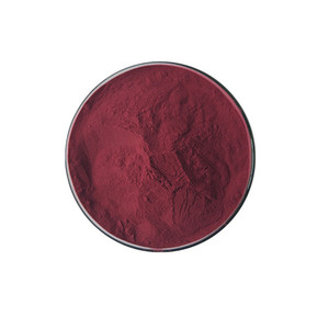 Best selling organic natural acai berry powder brazil/100% natural Acai Berry Extract / Brazilian Acai P.E./