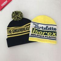 Outdoor Custom Pom Pom Toques Knit Personalized Toboggan Hats