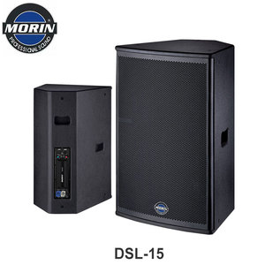 Customize Full Range Professional DJ PA System Active Powered Amplifier Speaker